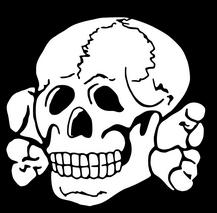 skull refrence